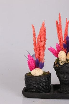 Kibrithane Çiçek Kc00200628 3'lü Helen Saksıda Kuru Aranjman 2