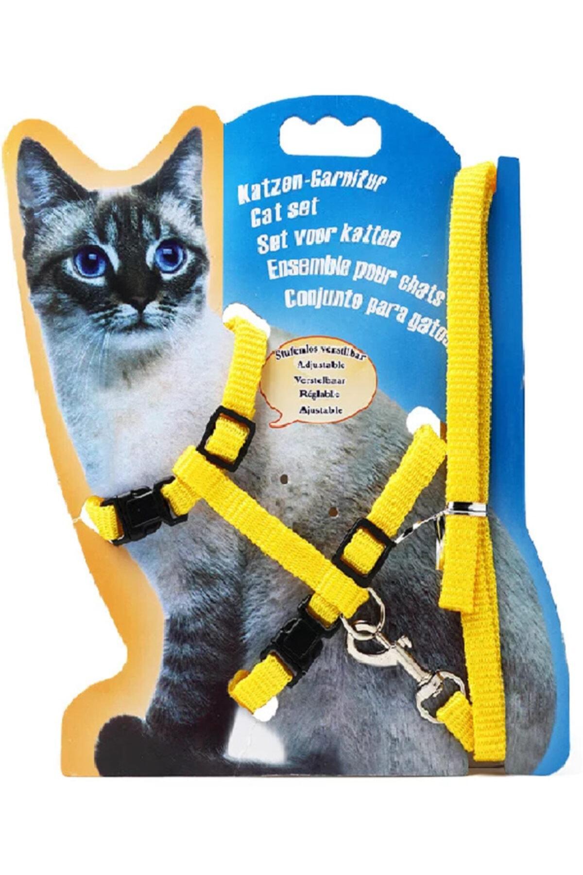 Kedi Göğüs Tasması Ve Gezdirme Seti No:116