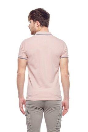 Tena Moda Erkek Koyu Pudra Polo Yaka Tişört 4