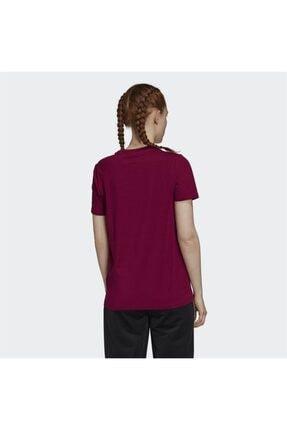 adidas Kadın Bordo Trefoil Tişört 1