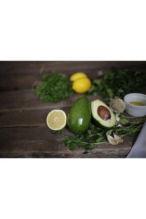 bibakmışsınkapında Avokado 5 Adet 0