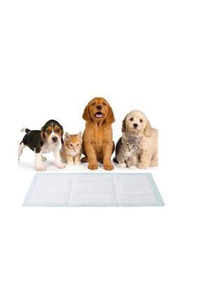 Evcil Hayvanlar Kitabı