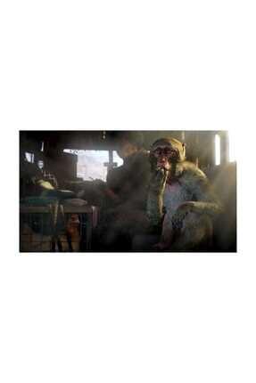 Ubisoft Far Cry 4 Ps4 Oyun 2