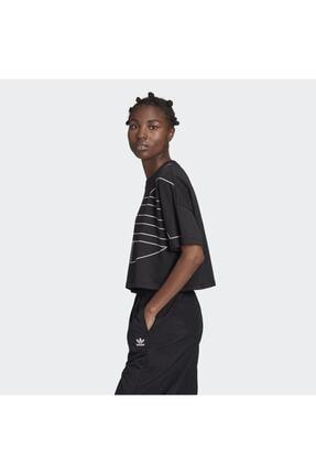 adidas Kadın Siyah Large Logo T-shirt 1