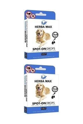 Herba Max Bitkisel Köpek Bit, Pire, Ense Damlası Dış Parazit 5x4 ml - 2 Adet 0