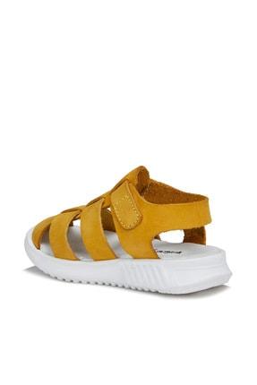 Vicco Pisa Unisex Ilk Adım Sarı Sandalet 3