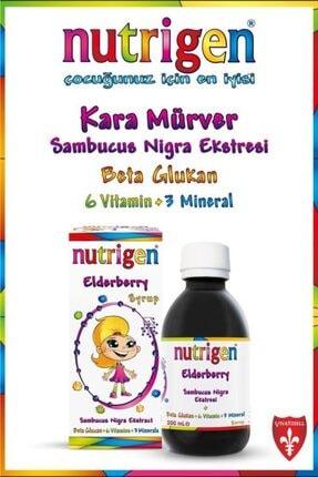 Nutrigen Elderberry Kara Mürver + Beta-Glukan + Bal Şurup 200 ml 0