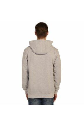 Bant Giyim - Breaking Bad Gri Kapüşonlu Erkek Sweatshirt Hoodie 2
