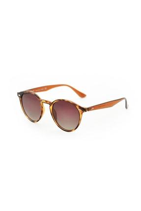 Letoon Amber Brown Unisex Güneş Gözlüğü Letoon-LL2200
