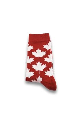 Socksarmy Kanada Bayrağı Muz Ananas Desenli 6 'lı Ahşap Kutulu Çorap Seti 1