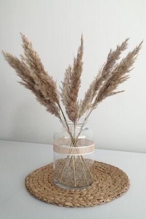 Kuru Çiçek Deposu Kuru Çiçek Pampas Küçük 7'li Demet 100 Cm (natural) 20420201280 0