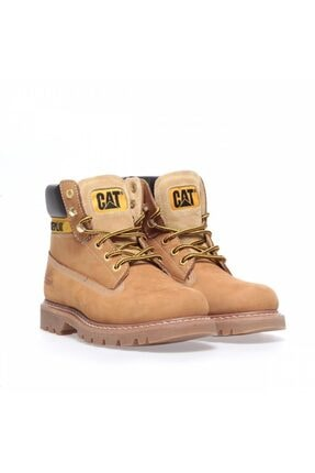 Cat Erkek Sarı Colorado Cat Bot 3