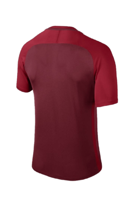 Nike Erkek Forma - Dry Trophy III Jsy - 881483-677 1