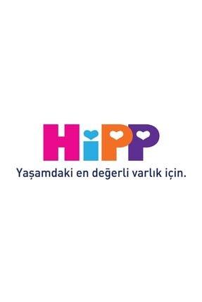 Hipp Doğal Kaynak Suyu 1 lt 1
