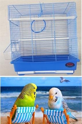Muhabbet Kuşu Kafesi - Mavi (dayang) Pi1980686