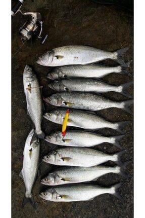 Lider Sahte Balık 12 Cm 28 Gram Set 1