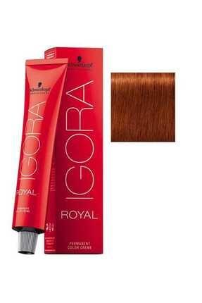 Igora Saç Boyası -Royal 6-77 Koyu Kumral-Yoğun Bakır 4045787207064 (Oksidansız) 0