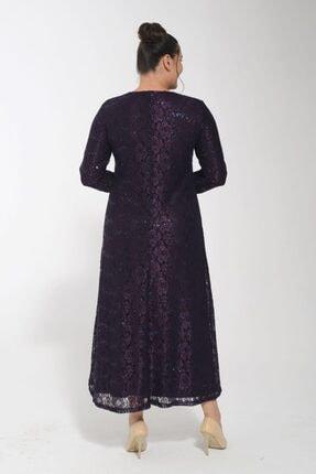 POTİMOR Kadın Mürdüm Dantel V Yaka Taş Detaylı Abiye Elbise 1