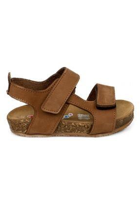 Toddler 4685 B Çift Cırt Tarçın Çocuk Sandalet 1