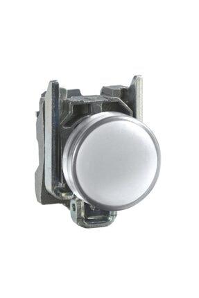 Schneider SİNYAL LAMBASI BEYAZ 24V AC-DC LEDLİ 0