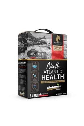 Mutamin Organics North Atlantic Health Somonlu Köpek Maması Combo Paket 3 MEDIUM/LARGE 1