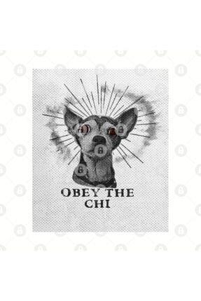 TatFast Obey The Chihuahua Kupa 2