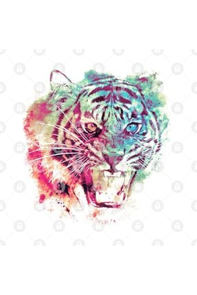 TatFast Glowing Tiger Kupa 2