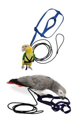 Kuş Oyuncakları
