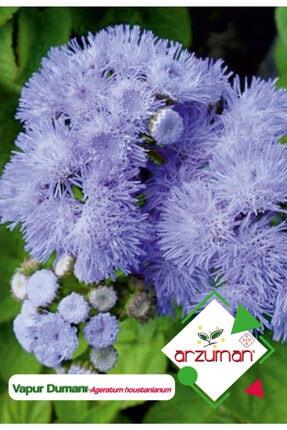 Arzuman Vapur Dumanı (ageratum Houstanianum) Çiçek Tohumu 100 Adet 0