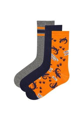 Penti Çok Renkli Erkek Çocuk Croc Star 3lü Soket Çorap 0