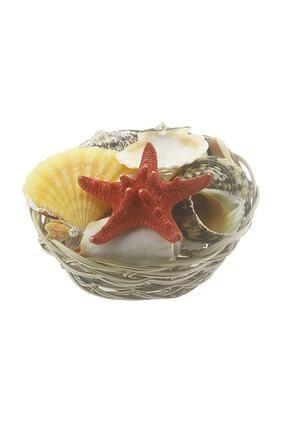 mutlu adım Karışık Deniz Kabukları Dekor Seti Sepette 0