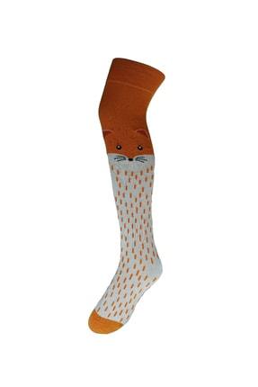 Adel Kutulu 3'lü Diz Üstü Çorap Seti-1 1