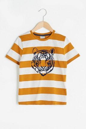 LC Waikiki Erkek Çocuk Koyu Sarı Çizgil Lka T-Shirt 0