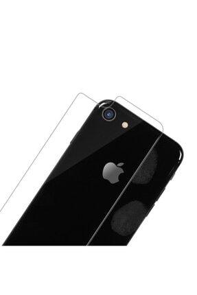 BCA Apple Iphone Se 2020 Arka Cam Kırılmaz Koruma 2