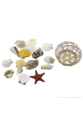 mutlu adım Karışık Deniz Kabukları Dekor Seti Sepette 1