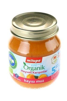 Aptamil Organik Kayısı Muz 125 gr 1