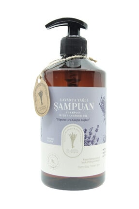 Gallipoli Lavender Lavanta Yağlı Şampuan 500 Ml Saç Dökülmeleri Ve Saç Kırılmalarına Karşı Etkili Lavanta Şampuan 1