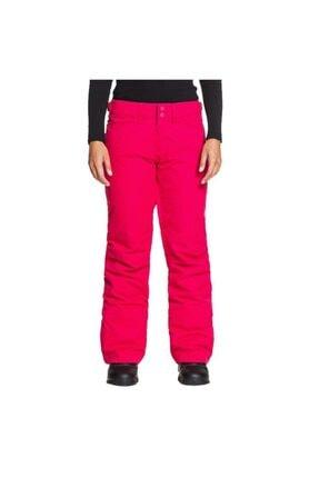 Roxy BACKYARD J SNPT YKK0 Çok Renkli Kadın Kayak Pantalonu 101068360 1
