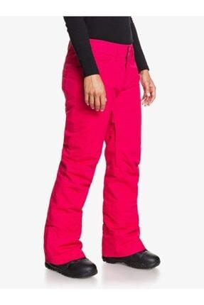 Roxy BACKYARD J SNPT YKK0 Çok Renkli Kadın Kayak Pantalonu 101068360 3