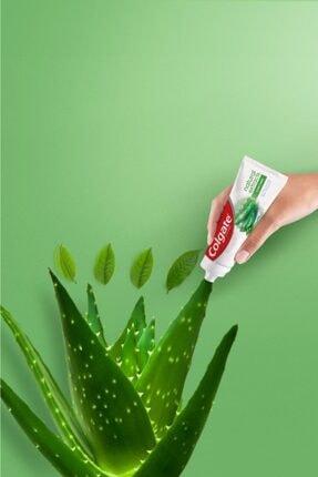 Colgate Natural Extracts Aloe Vera ve Yeşil Çay Özlü Diş Macunu 75 ml x 2 Adet + Fırça Kabı Hediye 3