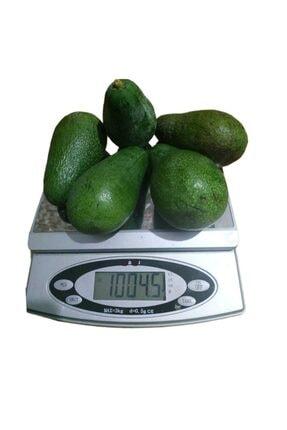 Alanya Özlem Avokado Dalından Taze Net En Az 1 Kg (3 -6 Adet Arası) 0