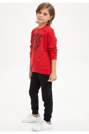 Defacto Erkek Çocuk Kaplan Baskılı Sweatshirt Ve Eşofman Altı Takım 1