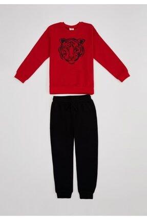Defacto Erkek Çocuk Kaplan Baskılı Sweatshirt Ve Eşofman Altı Takım 3