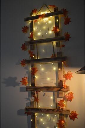 HayalAvm Doğal Ahşap Işıklı Dekoratif Sonbahar Konseptli 3 Çerçeveli Halatlı 5 M Günışığı Led 10 Mandallı 4