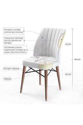 Canisa Concept Flex Serisi Füme Renk Ayaklı Sandalye 1