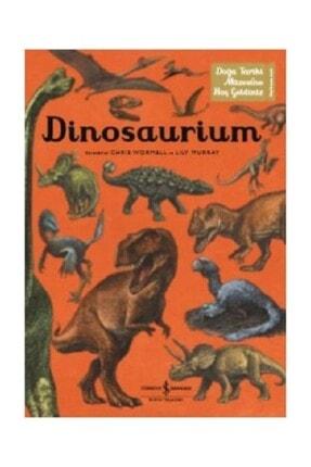 İş Bankası Kültür Yayınları Dinosaurium Lily Murray 0