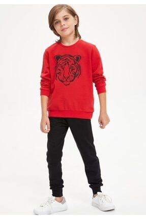 Defacto Erkek Çocuk Kaplan Baskılı Sweatshirt Ve Eşofman Altı Takım 0
