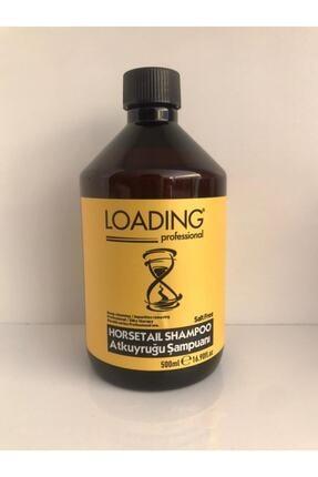 Loading Professional Hızlı Saç Uzatan Sampuan, At Kuyruğu Şampuanı 500ml 0