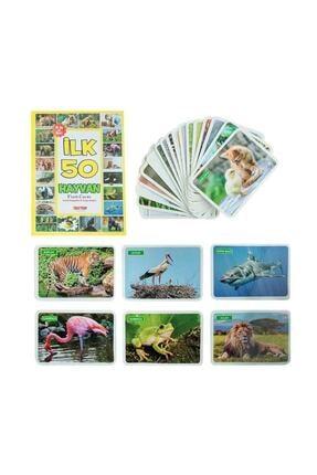 Diytoy 4'lü Eğitim Seti - Ilk 50 Sözcük, Meyveler, Hayvanlar Ve Bebeğimin Zeka Kartları 3