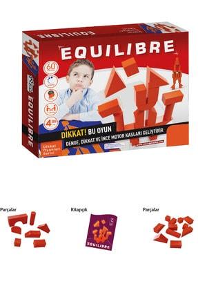 AyasEğiticiOyuncak Equilibrio Junıor Zeka Geliştirici Kutu Akıl ve Zeka Oyunu 2